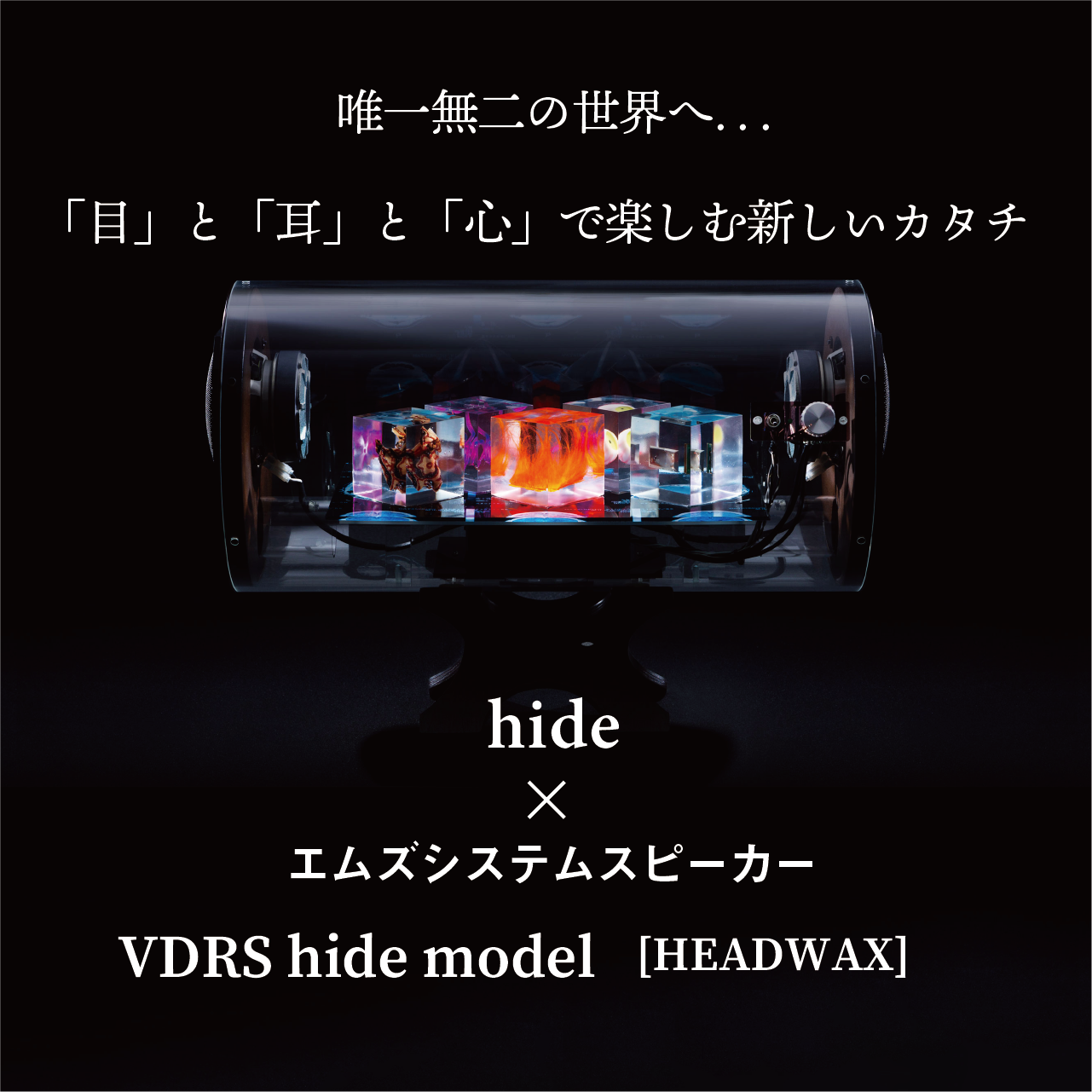hide (X JAPAN・hide with Spread Beaver・zilch)<br> × <br>エムズシステムスピーカー