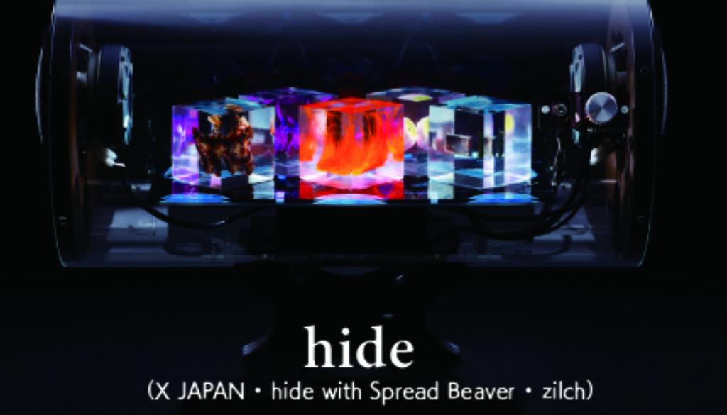 VDRS hide model 1